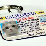 custom name tags name badges used as pet tags